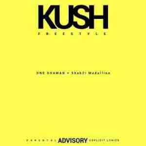 One Shaman - Kush (Freestyle) ft. ShabZi Madallion